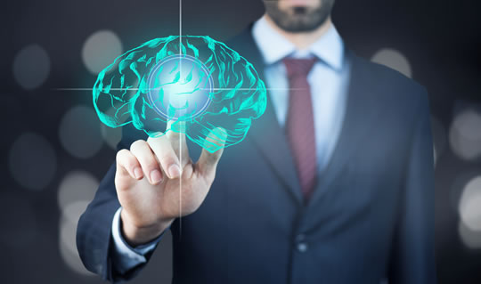 Developing the business brain